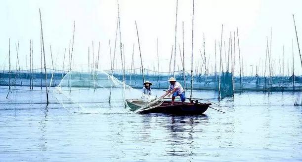 不得不说的尼龙行业小团体――巢湖渔网丝