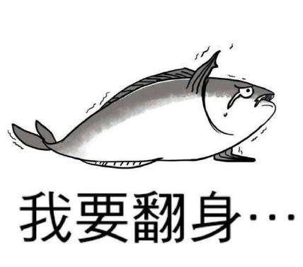 再生中空:咸鱼开始翻身