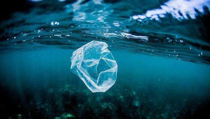 可降解塑料�M入加速�l展期